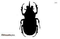 Rhinoceros Beetle Silhouette Picture