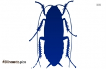 Roach  Clipart | Cockroach Silhouette