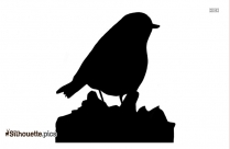 Silhouette Of Blue Jay Clipart Image