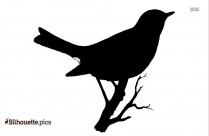 Parrot Bird Silhouette