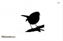 Cornell Bird Silhouette