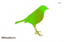 Bird Wings Silhouette Image
