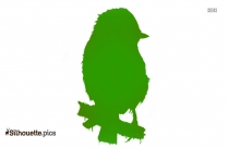Robin Bird On Branch Silhouette Image