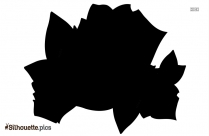 Rose Flower Drawing Silhouette Drawing