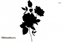Rose Flowers Drawing Silhouette Image