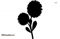 Free Buttercup Flower Silhouette