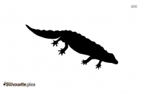Salamander Silhouette Vector And Graphics