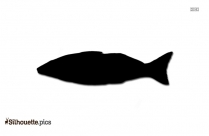 Sand Whiting Fish Silhouette Image