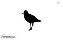 Eagle Free Animals Icon Outline