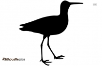 Black Cardinal Silhouette Vector