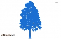 9 Trees Clipart || Barcana Christmas Tree Silhouette