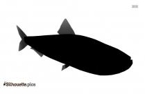 Sardine Silhouette Illustration
