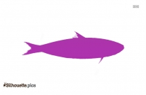 Sardine Silhouette Illustration