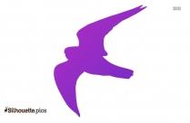 Pelerin Falcon Peregrine Silhouette
