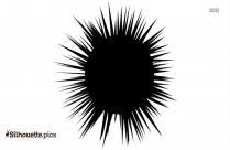 Sea Urchin Silhouette Picture