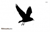 Seagull Silhouette Png