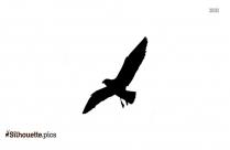 Sea Bird Standing Silhouette
