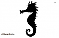 Seahorse Black And White Silhouette