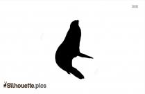 Cute Sea Lion Silhouette Image