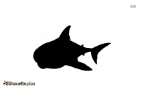 Black And White Leopard Shark Silhouette