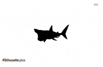Shark Silhouette Image And Vector