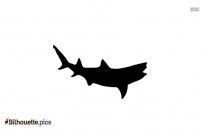 Lemon Shark Cartoon Drawing Silhouette
