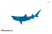 Tiger Shark Silhouette Picture