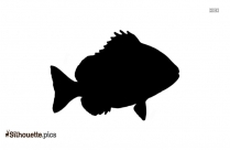 Black And White Muskellunge Silhouette