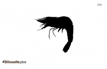 Live Shrimp Silhouette Vector And Graphics