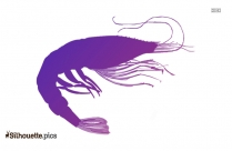 Cartoon Jellyfish Clipart Silhouette