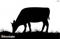 Best Cow Head Silhouette