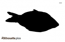 Fish Silhouette Drawing