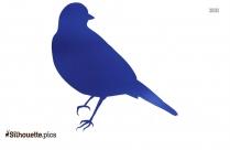 Free Titmouse Silhouette, Passeriformes Vector Image