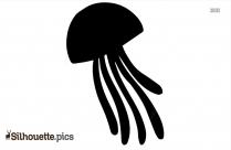Sea Lion Silhouette Vector