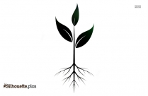 Plant Drawing Silhouette Image