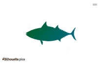 Skipjack Silhouette Illustration