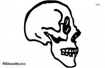 Skull Vector Silhouette Picture