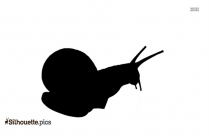 Snails Images Free Download Silhouette