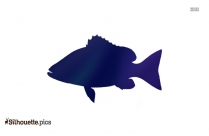 Free Marlin Fish Silhouette