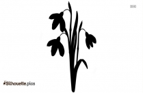 Flower Drawings Silhouette Clipart