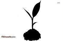 Soil Small Plant Silhouette