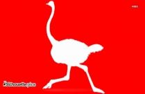 Ostrich Bird Vector Silhouette
