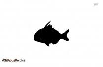 Sparidae Silhouette Image
