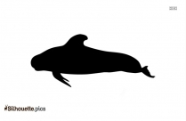 Whale Silhouette Picture