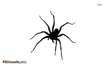 Wolf Spider Silhouette Clipart, Vector
