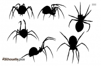 Spider Drawing Silhouette Image Vector