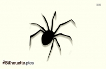Spider Silhouette Png Image