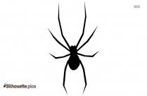 Spider Tattoo Design Clipart Silhouette