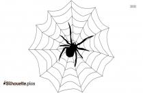 Spider Web Silhouette Free Vector Art