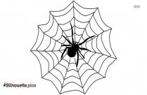 Spider Web Silhouette Illustration